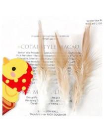 Generic 50pcs Coque Gallo Gallo Silla De Plumas 4-6 Pulgadas - Color Natural - Envío Gratuito